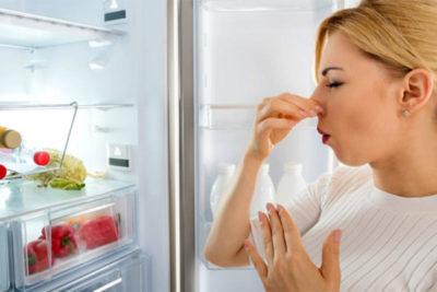 на стенке холодильника намерзает снег что делать